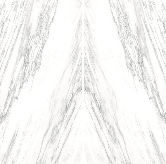 Carrara Venato